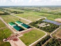 Ethanol-Fabrik im Chaco angekündigt
