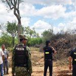 Operation wegen illegaler Abholzung auf einer Estancia im Chaco