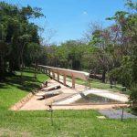 Städtischer Park entwickelt sich zum Brutplatz für Mücken