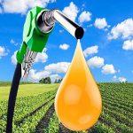Umweltfreundlicher Biodiesel aus Soja