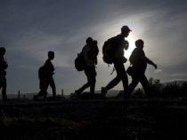 Pro-Life Gruppen bitten darum, den Migrationspakt nicht zu unterschreiben