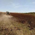 Deutsche Kolonisten für Fliegenplage in ländlichen Gebieten angeprangert