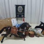Das Trojanische Pferd als Drogenversteck