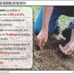 Schlechte Ernte der Soja könnte das BIP um fast 1% einbrechen lassen