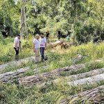 Staatsanwalt untersucht Umweltstraftat im Naturschutzgebiet