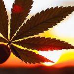 Drogen in Paraguay: Die Fakten
