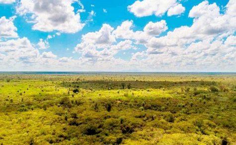 Eine Million Hektar mehr für Schutzgebiete an der paraguayischen Grenze