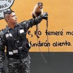 Ein Affe als Maskottchen der Polizei