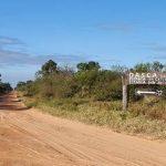 Viehzüchter wegen Abholzung per Haftbefehl gesucht
