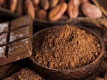 Schokolade: Das Fest der Götter