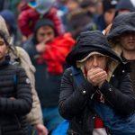 Flüchtlinge: Was wollen sie hier?
