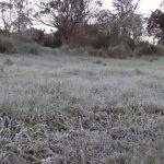 Erster Frost im Süden des Landes