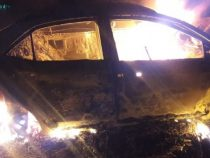 Auto prallt gegen Baum: Fahrerin verbrennt im Fahrzeug