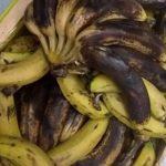 Faule Bananen