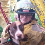 8 Tage vermisst: Hund aus Brunnen gerettet