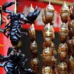 Seid vorsichtig, Insekten! Jeder Käfer, der einen ärgert, wandert auf den Grill