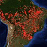 Was gehen uns die Waldbrände im Amazonas an?