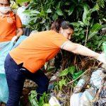 Warnung vor einer schweren Dengue-Epidemie