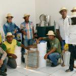 Honigproduktion vor dem Einbruch