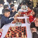 Schach: Ein Tool für Bildung und Umwelt