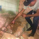 Skelettteile im ehemaligen Haus von Stroessner entdeckt