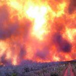 Evakuierungen wegen unkontrollierbarer Waldbrände