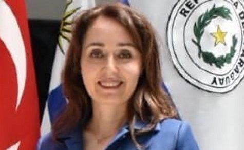 Türkei rechtfertigt Militäroffensive in Syrien und erwartet Unterstützung aus Paraguay