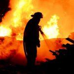 Brände lösen eine Invasion von Fliegen und Bindehautentzündungen aus