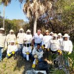 Honig aus dem Pantanal: Produkt ohne Grenzen