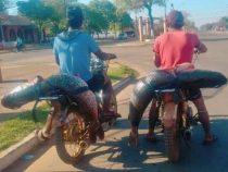 Zwei Surubi auf dem Motorrad