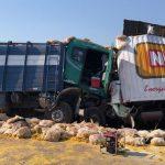 Frontalzusammenstoß von zwei LKW: Ein toter Fahrer und der andere alkoholisiert