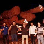 Mennonit involviert: 3 Holzschmuggler-Lkw's gestoppt