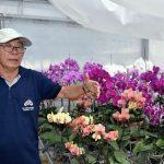 Paraguay: Ein Königreich der Orchideen