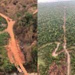Naturschutzgebiet wird mit modernsten Methoden ausgebeutet