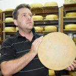 Schweizer Käse liegt im Trend