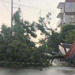 Sturm führt zu schweren Schäden und Stromausfällen