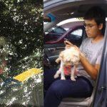 Hund bei mehr als 35 °C im Auto zurückgelassen
