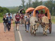 Mit dem Ochsenkarren auf Pilgerfahrt