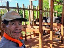 Bevölkerung der Indigenen wächst jährlich um 12% und fordert mehr Land