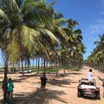 Mit Urlaubsfotos auf der Jagd nach Steuerhinterziehern
