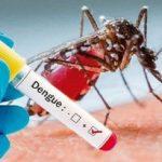 Länder mit Dengue zeigen weniger Auswirkungen von Covid-19
