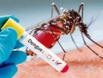 Zum Coronavirus wird ein Dengue-Alarm hinzugefügt