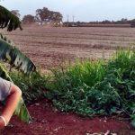 Deutschen Staatsbürger wegen dem Einsatz von Agrochemikalien angezeigt