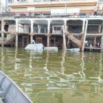 Schiff der Marine sinkt im Hafen von Asunción