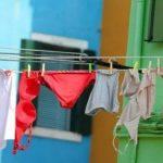 Mittlerweile werden sogar Wäsche und Pflanzen gestohlen