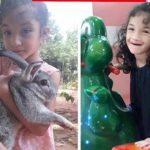 7-Jährige verschwunden: Hohe Belohnung ausgesetzt