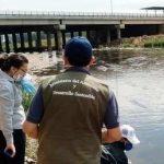 Klare Flüsse und Fische: Die andere Seite der Quarantäne