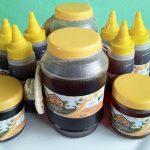 Honig als Naturheilmittel gegen Atemwegserkrankungen