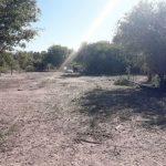 Trockenheit trifft vor allem Viehzüchter im Chaco