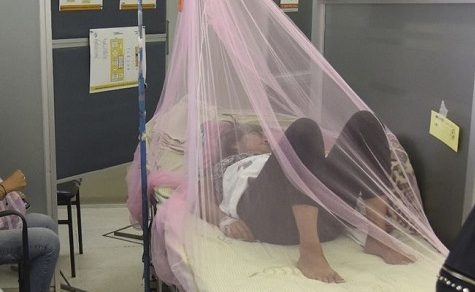Dengue-Fieber tötet mehr Menschen als das gefürchtete Coronavirus